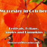 Worcester in October – Festivals, Foliage, Apples and Pumpkins